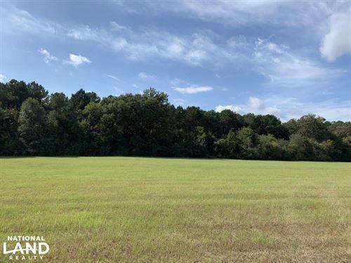 Beautiful Rolling Pastureland Near : Benton : Yazoo County : Mississippi