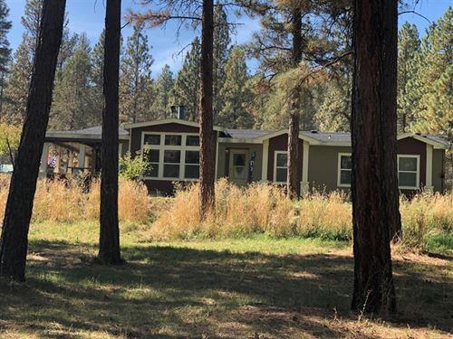 Peace And Quiet : Bonanza : Klamath County : Oregon