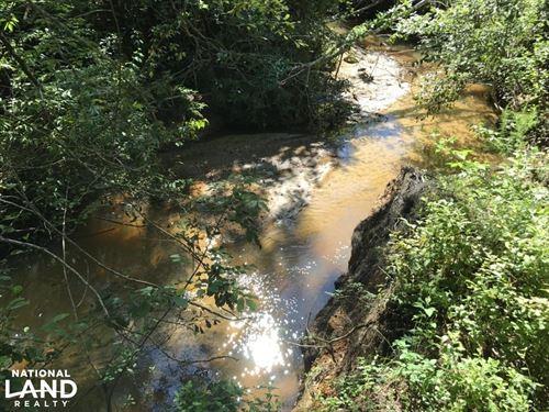 The Pigeon Creek Gosport Tract : Gosport : Clarke County : Alabama