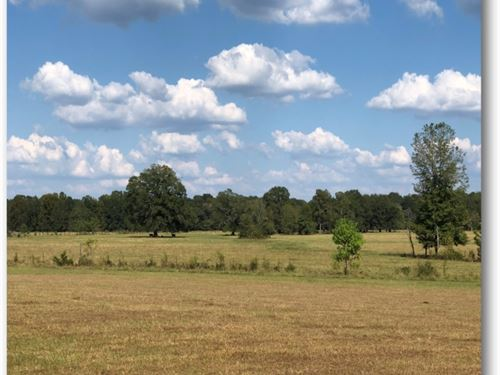 320 Acres In Hinds County In Utica : Utica : Hinds County : Mississippi