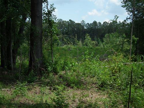 Johnson 124.59, Leake County : Carthage : Leake County : Mississippi