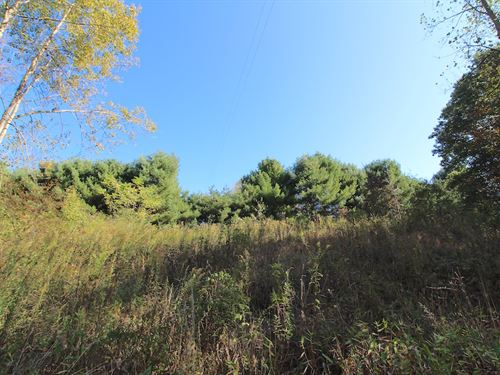 Horseshoe Bend Rd, 9 Acres : Newcomerstown : Tuscarawas County : Ohio