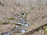 Fortress Property, Mountain Views : Callaway : Franklin County : Virginia