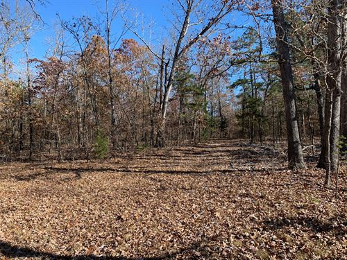 End Of Road 38+ Acres-Quality : Yellville : Marion County : Arkansas