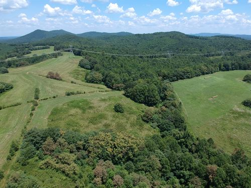 831 Contiguous Acres in Franklin Co : Bassett : Franklin County : Virginia