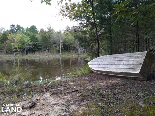Southern Outdoor Seclusion : Duck Hill : Montgomery County : Mississippi