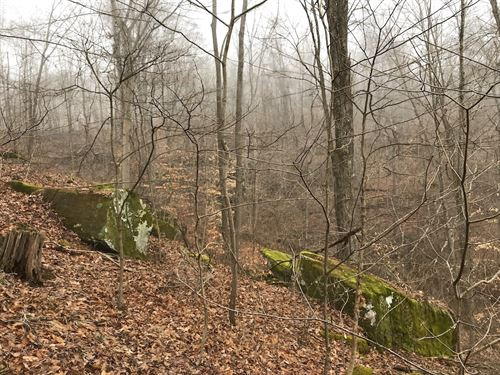 Henderson Road, 13 Acres : Guysville : Athens County : Ohio