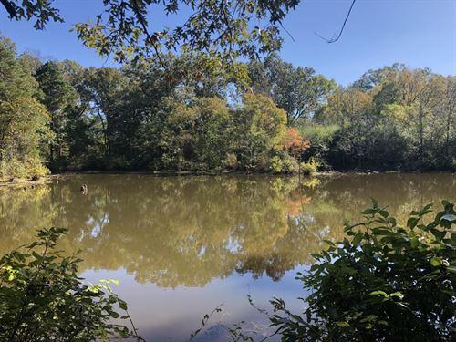 Hickory Plains Creek Hunting Tract : Hickory : Prairie County : Arkansas