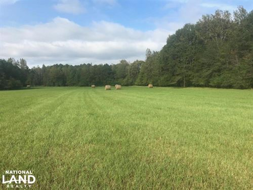 County Road 21 Homesite And Recreat : Fayette : Alabama