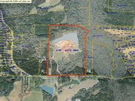 Al Roberts Road Farm : Senoia : Coweta County : Georgia