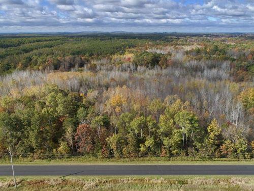Affordable Hunting Land Adams : Grand Marsh : Adams County : Wisconsin