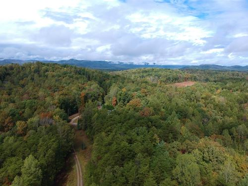 Beauty, Seclusion, And Wildlife : Ferrum : Franklin County : Virginia