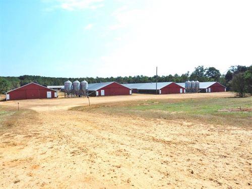 8 House Broiler Poultry Farm 92 Acr : Philadelphia : Winston County : Mississippi