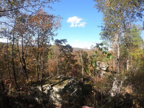 Ozark Mountain Hunting Land : Leslie : Van Buren County : Arkansas