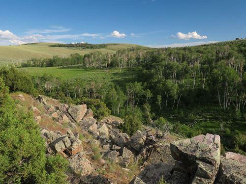 Cushman Creek Ranch : Encampment : Carbon County : Wyoming