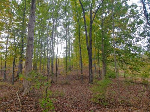 Cheap Land, $1,250 / Acre : Maxeys : Oglethorpe County : Georgia