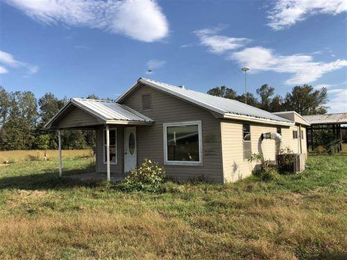 40 Acres Will Subdivide Into tw : Vilonia : Faulkner County : Arkansas
