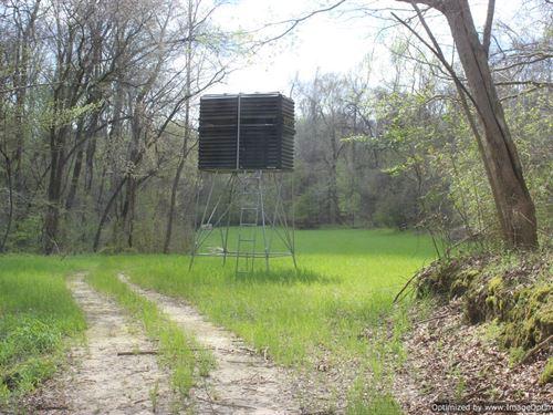 Outstanding Hunting : Satartia : Yazoo County : Mississippi