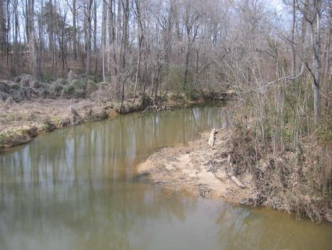 Secluded Property on Brush Creek : Siler City : Chatham County : North Carolina
