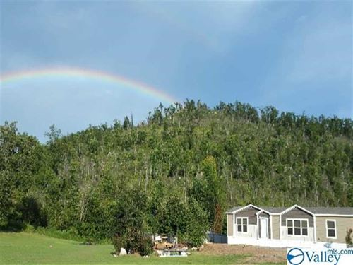 Mountain Views, Home, Privacy : Glencoe : Etowah County : Alabama