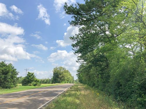 642 Acres Hwy 21 Tract 1195 : Crockett : Houston County : Texas