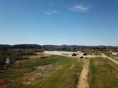 Happy Hen Ranch : Wellington : Calhoun County : Alabama