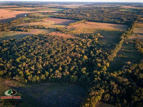 80 Acre Neosho River Hunting Farm : Parsons : Neosho County : Kansas