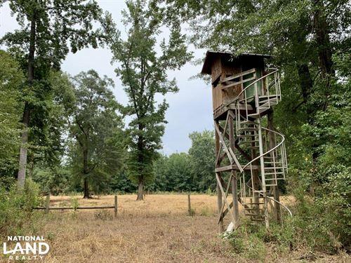 Putnam Hardwood Hunting & Timber : Putnam : Marengo County : Alabama