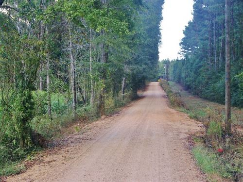 6.29 Acres Land For Sale West Linco : Bogue Chitto : Lincoln County : Mississippi