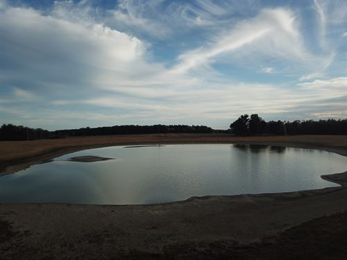 Large Pond And Approx, 38.72 +/- A : Manchester : Coffee County : Tennessee