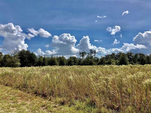 Land Gainesville, Fl, 28 Vacant : Hawthorne : Alachua County : Florida