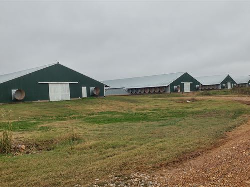 Mega House Broiler Farm Nw Arkansas : Decatur : Benton County : Arkansas