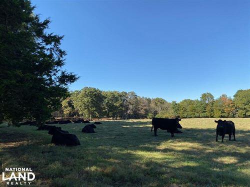 46 Acres of Farmland / Recreati : Crouse : Gaston County : North Carolina