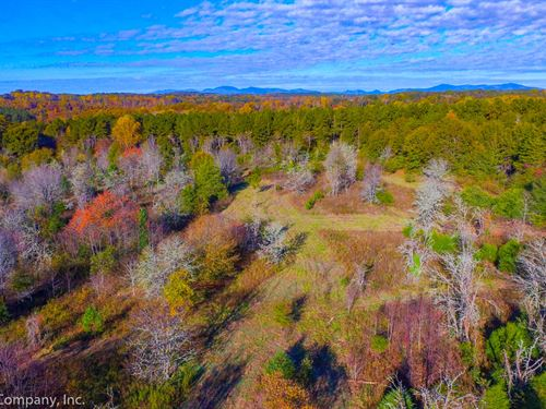 31.8 Acre Farm in New Prospect Area : Inman : Spartanburg County : South Carolina
