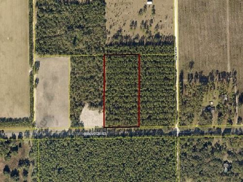 5 Acres Just Minutes From Town : Live Oak : Suwannee County : Florida