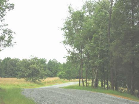 Build Your Own Farmette : Bear Creek : Chatham County : North Carolina