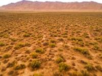 Lassen Hemp Zone : Doyle : Lassen County : California