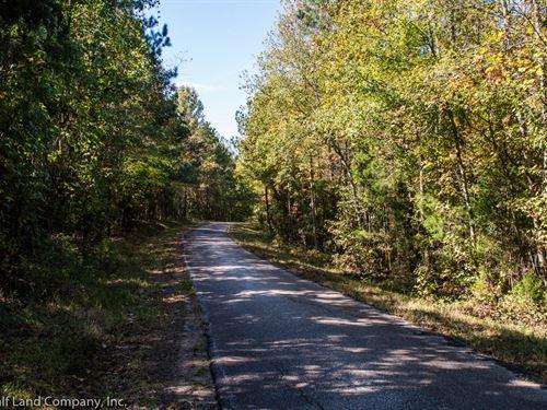 92 Acre Hunting Tract in Pea Ridge : Jonesville : Union County : South Carolina