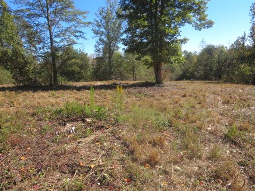 13 Acres Slightly Wooded With Power : Lineville : Clay County : Alabama