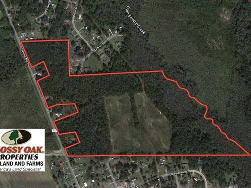 58 Acres of Farm And Timber Land : Laurel Hill : Scotland County : North Carolina