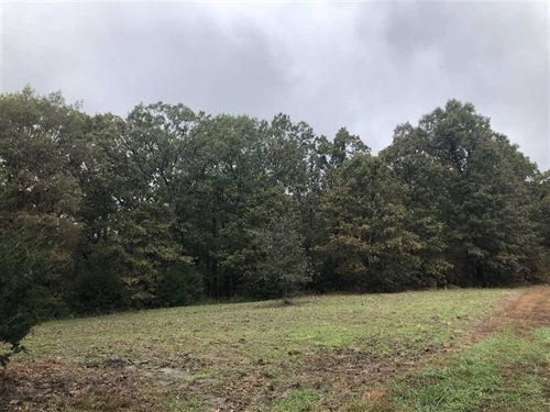 Affordable Hunting Get Away Farm : Cole Camp : Benton County : Missouri