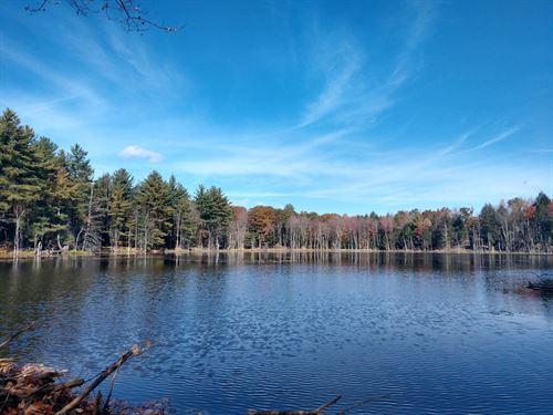 Rensselaer Views Forest : Grafton : Rensselaer County : New York