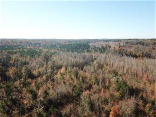 Abundant Wildlife 121293 : Holladay : Benton County : Tennessee