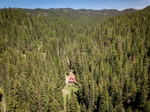 Secluded Off-Grid Mountain Property : Cascade : Valley County : Idaho