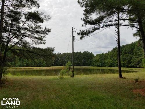 Pretty Branch Road Homesite And Fis : Cuba : Sumter County : Alabama