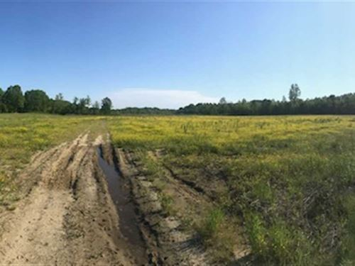 68 Acres in Booneville, MS : Booneville : Prentiss County : Mississippi