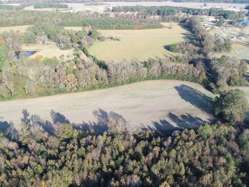 28 Acres in New Albany, MS : New Albany : Union County : Mississippi
