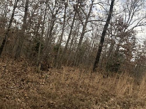 40 Acres Recreational Property : Cross Timbers : Hickory County : Missouri