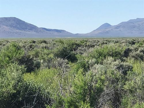 320 Acres Land, Duck Lake, Washoe : Gerlach : Washoe County : Nevada