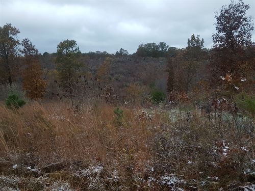 Land For Sale in Southern Missouri : Willow Springs : Texas County : Missouri